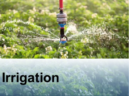 Irrigation sprinkler.jpg